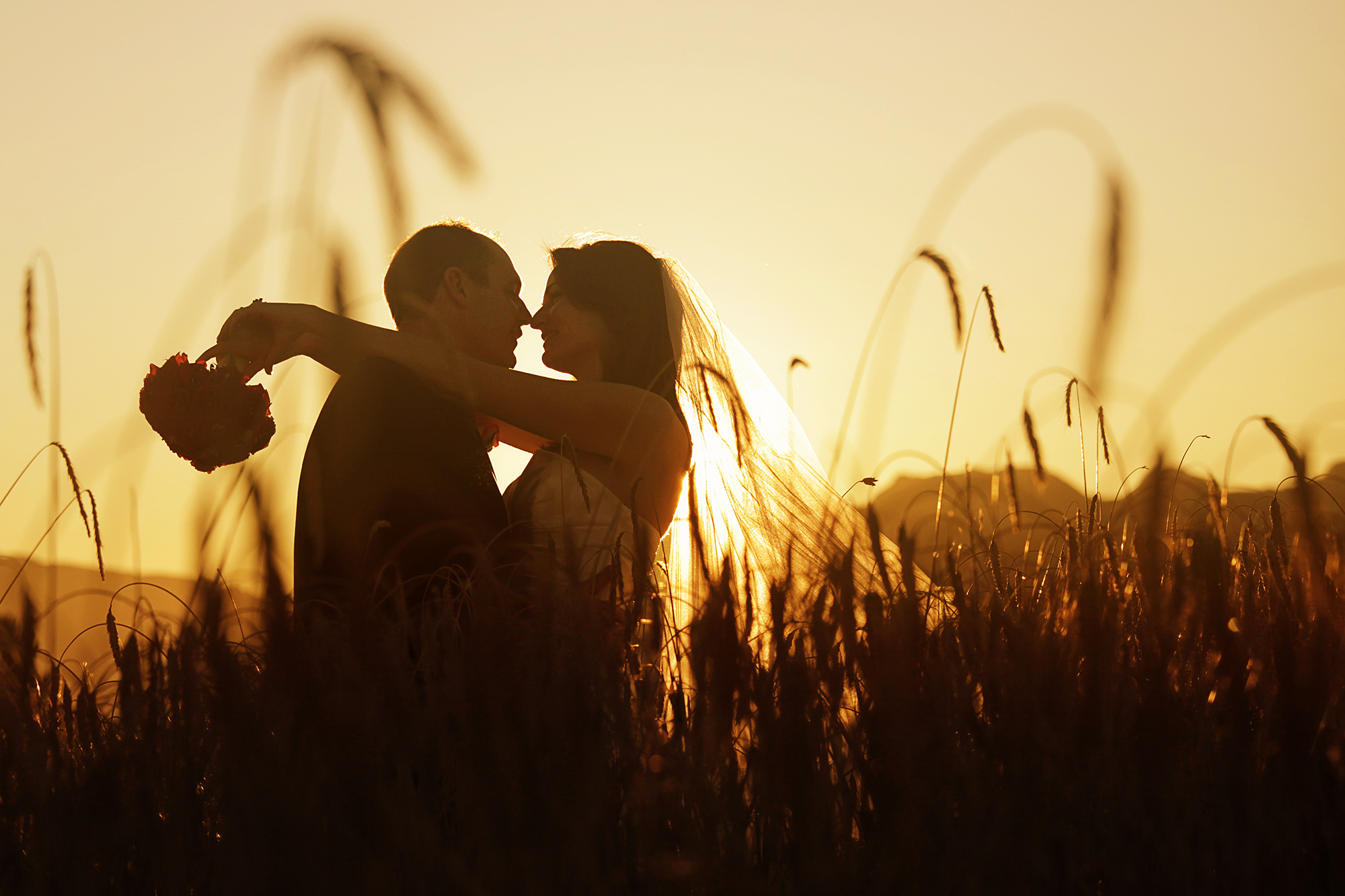 Backlit Wedding Couple